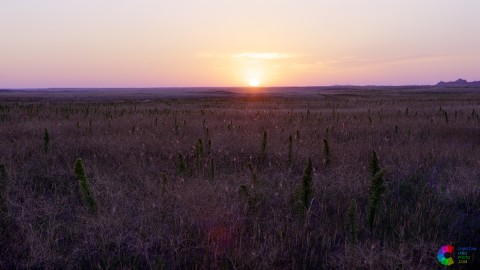 Prairie Sunrise 3